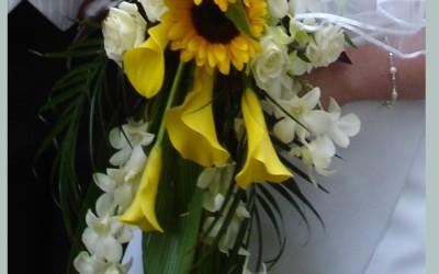 Bridal 108