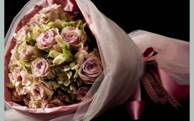 Bridal 111
