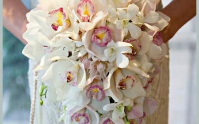 Bridal 117